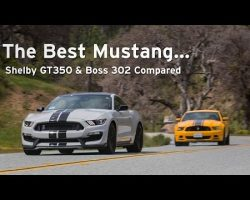 Shelby GT350 vs Boss 302 – The Best Mustangs Compared – Everyday Driver